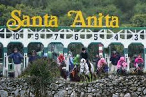 Santa Anita had a problem with rocks emerging from their track. (Merritt Clifton collage)