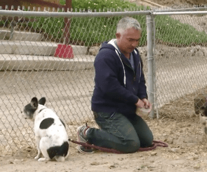 Cesar Milan may be saying his prayers, but whether he is or not, he is also holding Simon short-leashed with his knee.