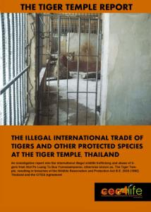 Tiger Temple report cover