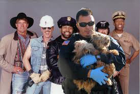 Constabularly humane law enforcement was adapted from the 19th century law enforcement model serving rural communities,  and became in turn the prevailing model for building code enforcement,  firefighting,  and many other branches of protecting community health and safety––but the Village People did not actually include an animal control officer among their singing cast of first responders.