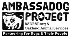 BADRAP and the Oakland Animal Shelter have partnered to promote pit bull adoptions,  but formation of the partnership coincided with intensified criticism of the shelter by pit bull advocates.