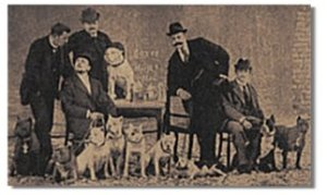 A boxer exhibition circa 1896. Boxers were at that time still a fighting breed, not differentiated from pit bulls by breed standards until 1936.