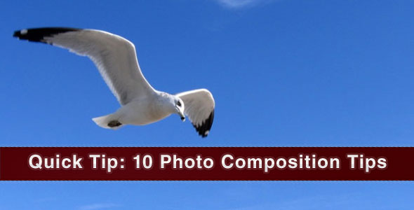 Photography Tutorial: 10 Photo Composition Tips