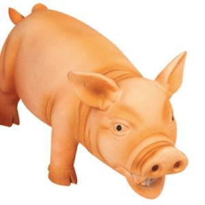 Den grymtande grisen
