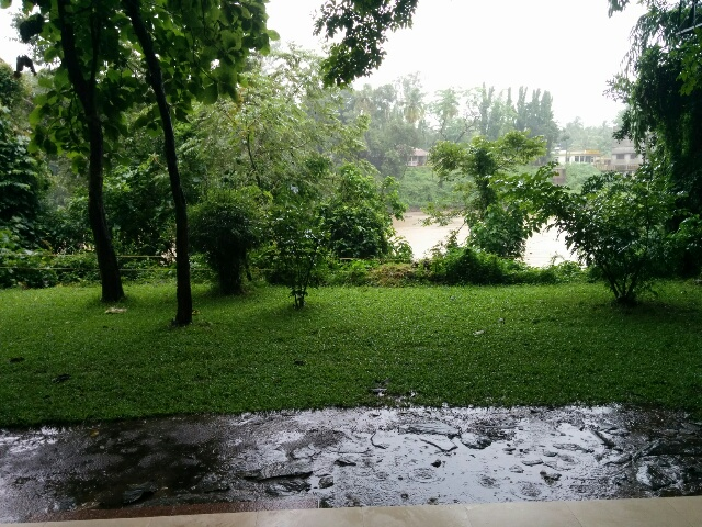 The green view from the cottage of the Kali River Camp, Dandeli