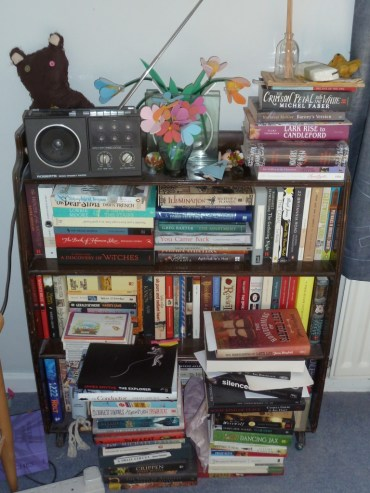 Bookcases again 008a