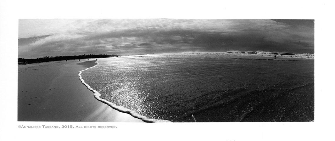 A black and white panorama of Asilomar Beach in Pacific Grove, Monterey, California.