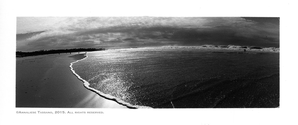 A black and white panorama of Asilomar Beach in Pacific Grove, Monterey, California.