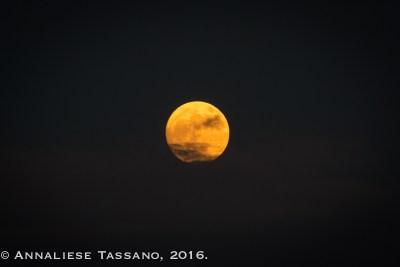 161113_super_moon-0015