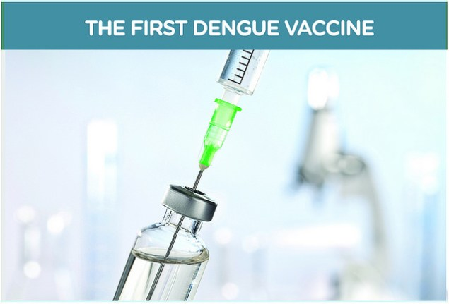 Summer : best time to get the dengue vaccine!