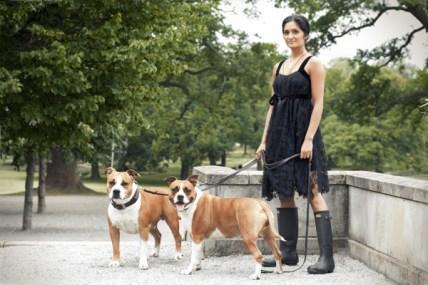Dogs-pet portrait -Ann Charlotte Photography@2016-1