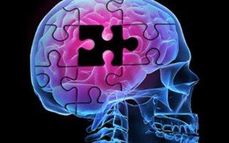 science-brain-puzzle