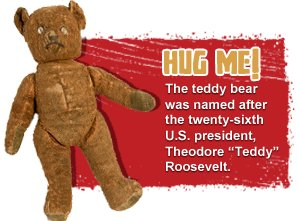 vignette_teddy