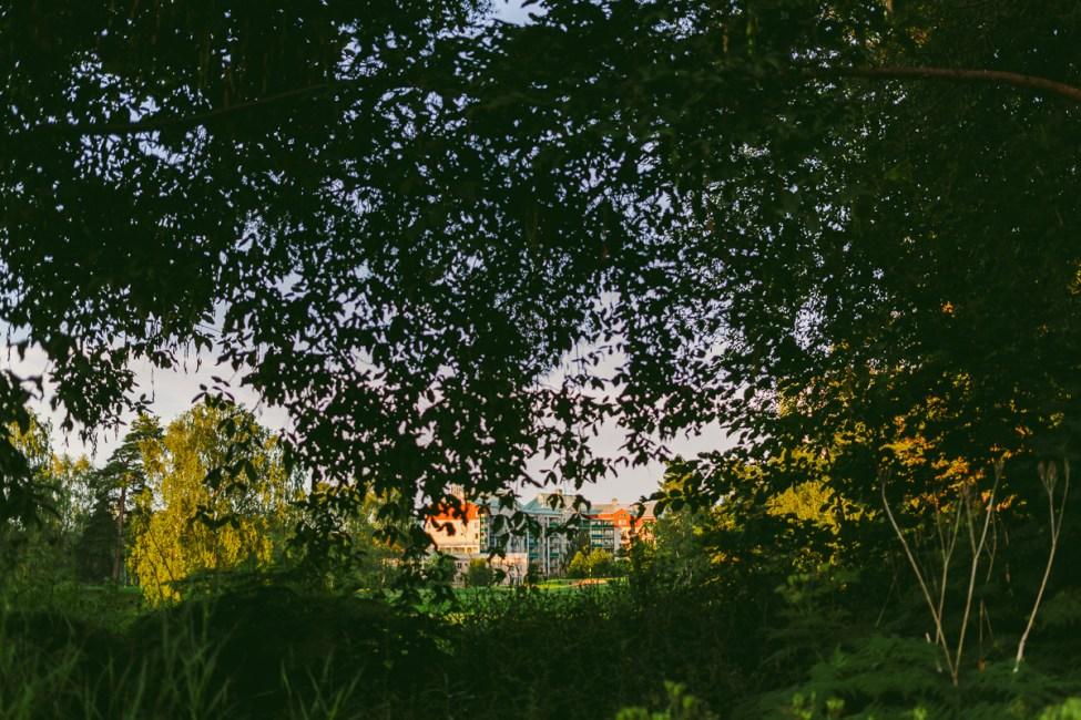 En kvällspromenad i Danderyd