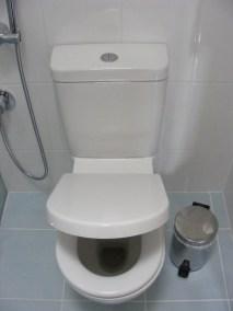 Plumbers Sydney: ANU Plumbing Sydney - Previous work Toilet