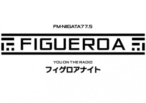 FIGUEROA NIGHT SPECIAL in アオーレ長岡Aollumination