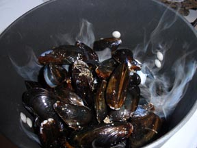Steaming Steamed Musseld