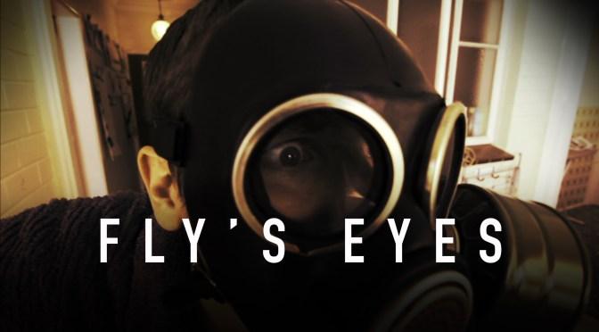 flys eyes