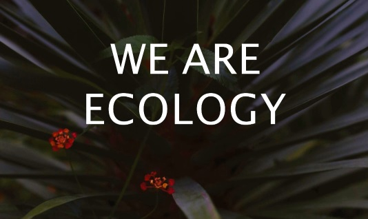 we are ecology
