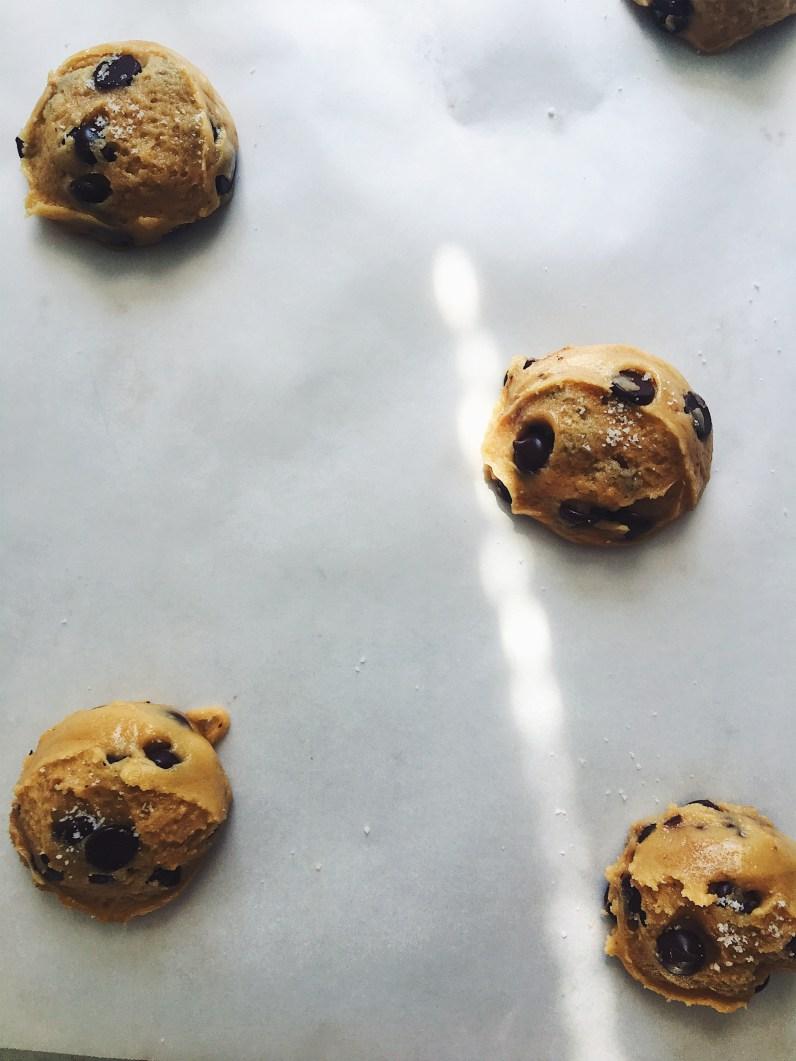 appeasing-a-food-geek-malt-cookies-9