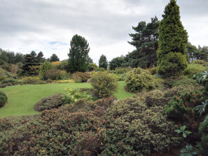 UK - Edinburgh, Royal Botanic Garden