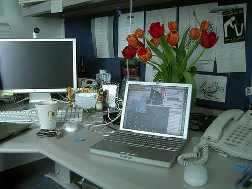 an employee office from several years ago at apple hq cupertino u