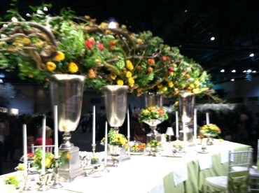 Philadelphia Flower Show #Brilliant!