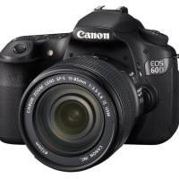 Your Guide to Canon SLR Cameras