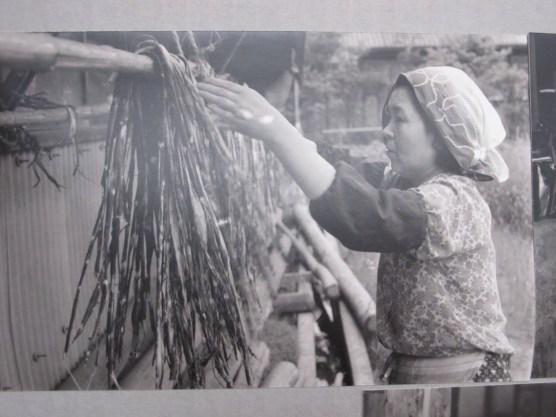 drying the kozo bark fiber