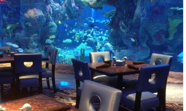 Aquarium Restaurant ? Nashville, TN