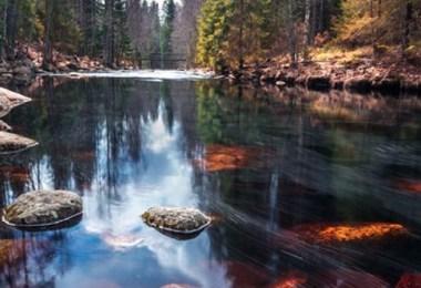 فنلندا