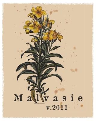 MALVASIE 2011 Label