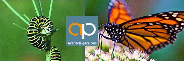 évolution Architecte-PACA.com 2015