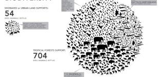 05-infographic-architectkidd-biodiversity
