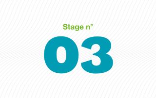 ARFI stage 03 handicap mental : dépistage, diagnostic, suivi et complications spécifiques