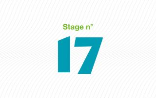 ARFI stage 17 Addictions chez les usagers jeunes et adultes accueillis dans les établissements sociaux et médico-sociaux