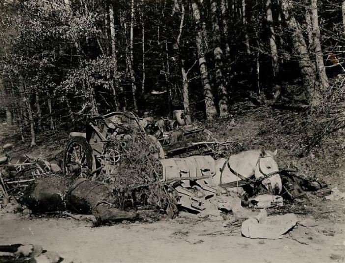 Dead horses and wrecked vehicles of a German convoy are strewn along the road in the vicinity of Lug, Germany. Following an attack from U.S. Artillery. The Germans were trying to escape encirclement by 3rd and 7th Armies.