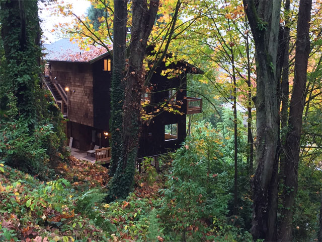 Tree house in Capitol Hill