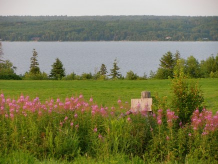 Ariose's view overlooking Lake Temiskaming