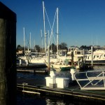 After our over-night-and-then-some sail to get here, we anchored just out of the shipping channel, and slept. The next day we moved to the Tidewater Marina...