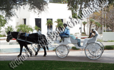 Phoenix Wedding Carriage rentals, Horse drawn carriage ...