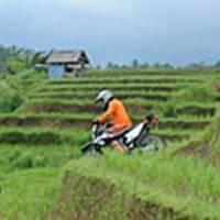 Bali Dirt Bike Adventure