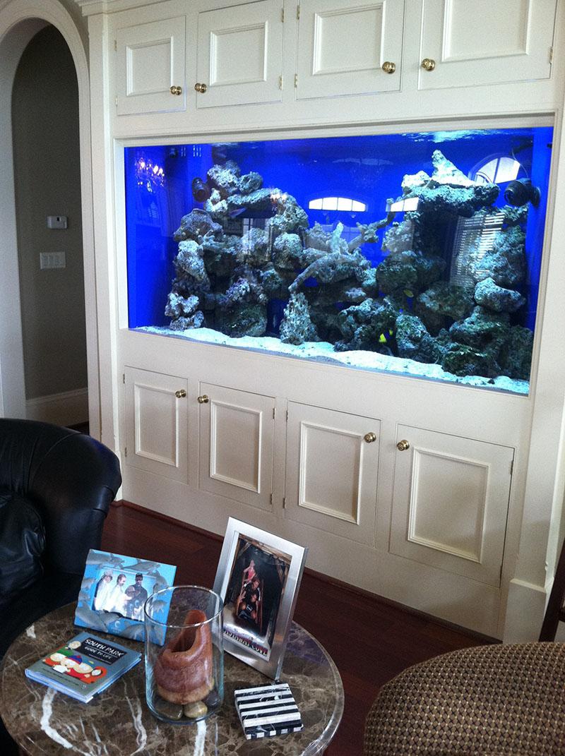 Large Of 200 Gallon Aquarium