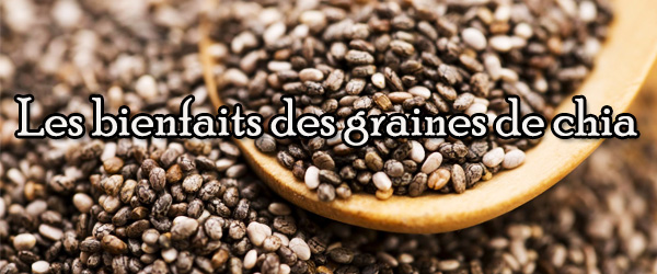 Les bienfaits des graines de chia 600 x 250