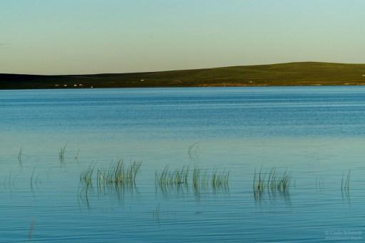 Ögii See
