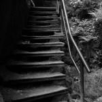 Alte Treppe im Elbsandsteingebirge