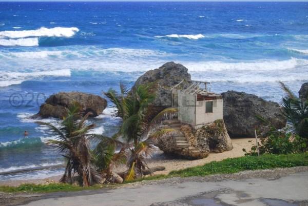 jfb_012_Caribbe