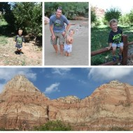 Zion National Park | Wordless Wednesday Linky