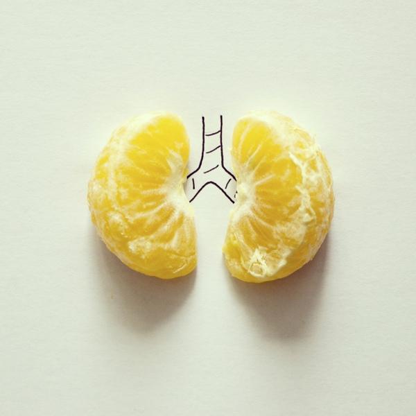 pulmones_mandarina_javier perez-intagram experiments