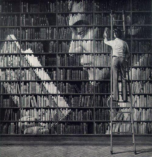 bookshelf_porn_4